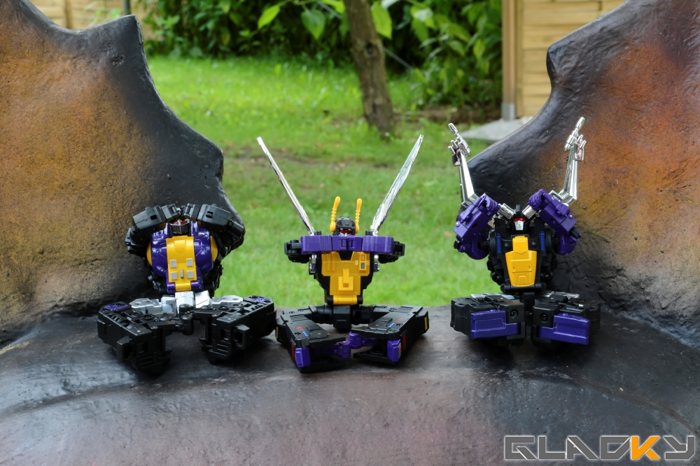 Fans Toys Insecticons (33)
