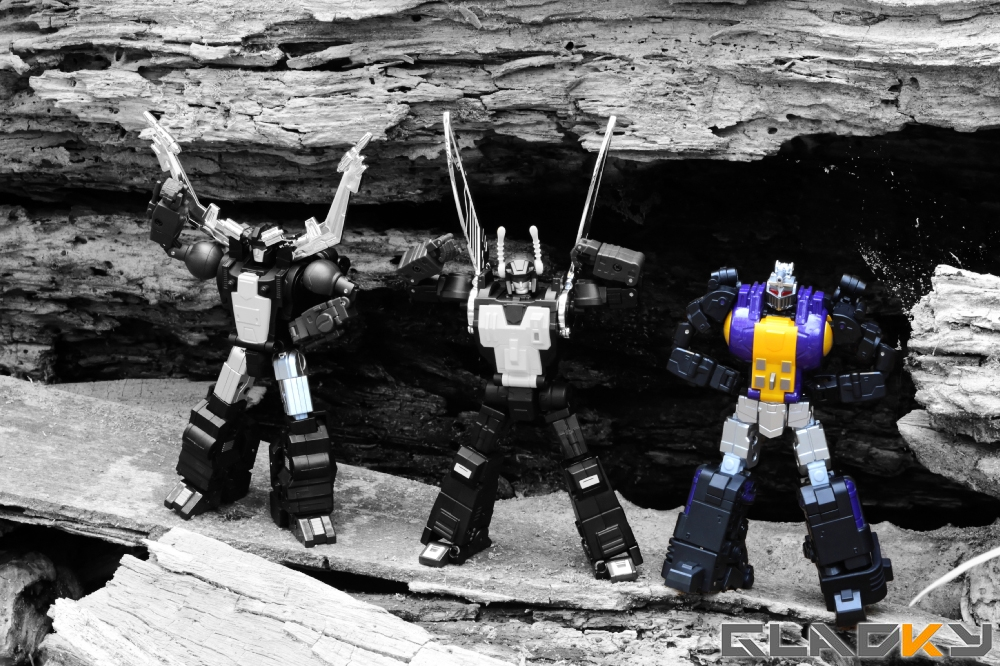 Fans Toys Insecticons (93)