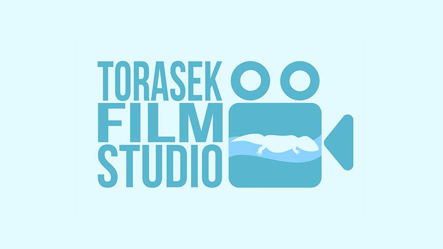 Pyrkon 2018 Torasek Film Studio