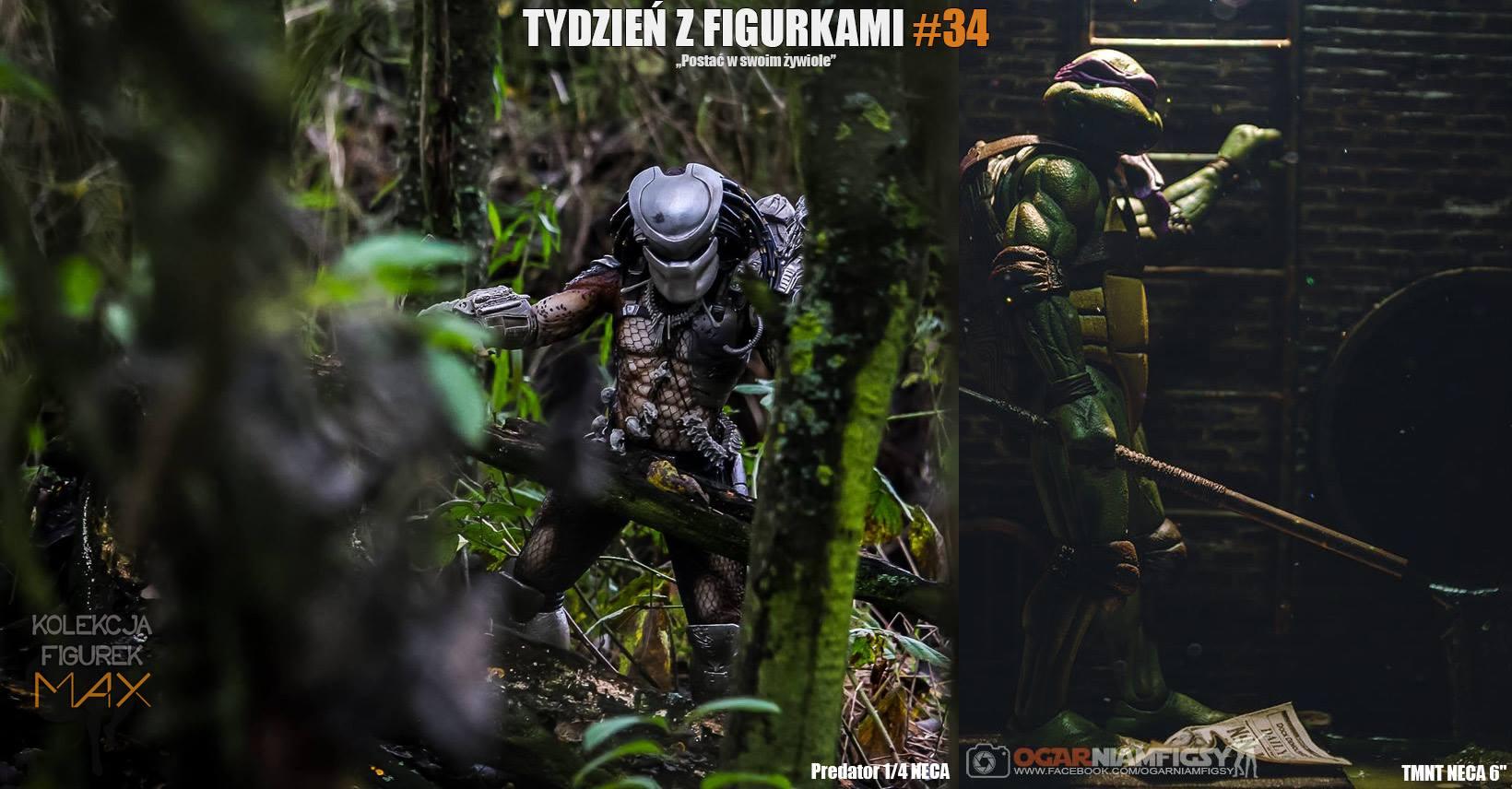 TzF 34 dwa zwycięskie na tło